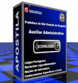 Apostila Prefeitura São Gonçalo Gurguéia Auxiliar Administrativo pdf download